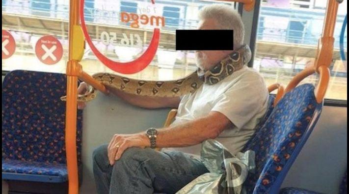 Hombre utiliza serpiente a modo de cubrebocas; se viraliza