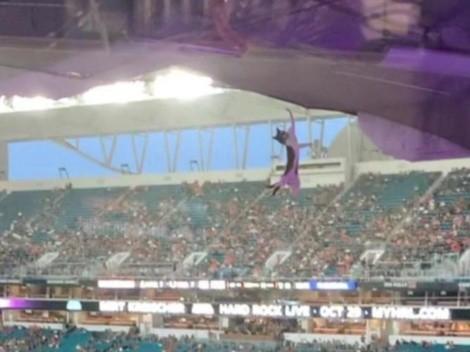 Gatito se salva de una muerte segura en un estadio de Florida