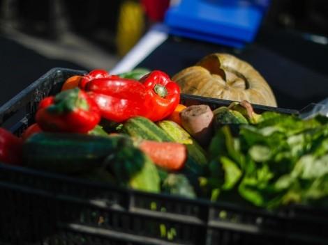Fiestas Patrias   ¿Cómo preparar un asado vegano?